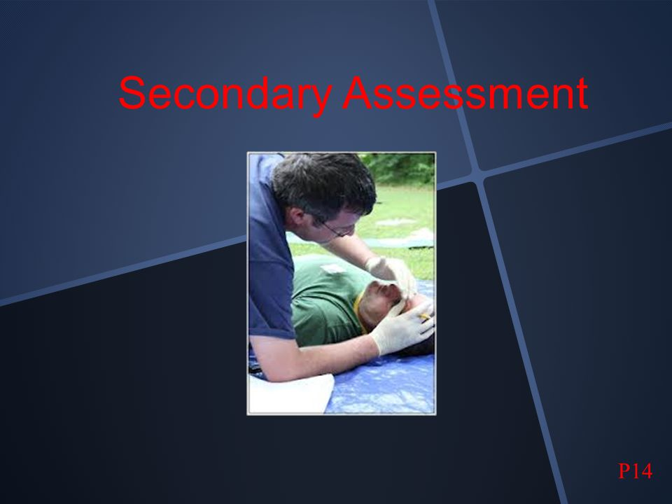Secondary Assessment P14