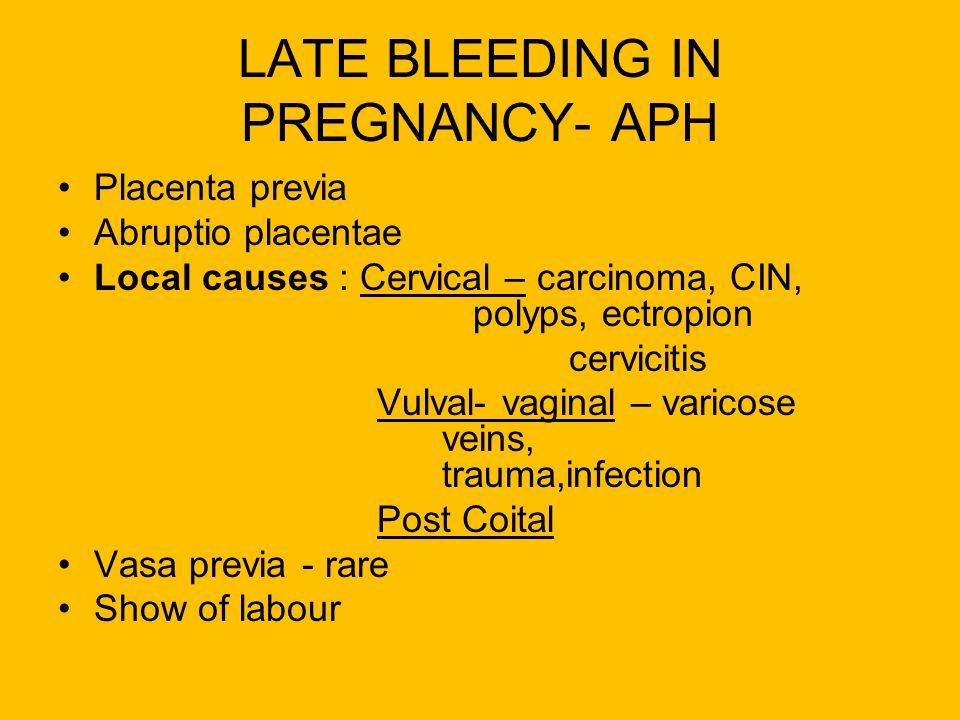LATE BLEEDING IN PREGNANCY- APH