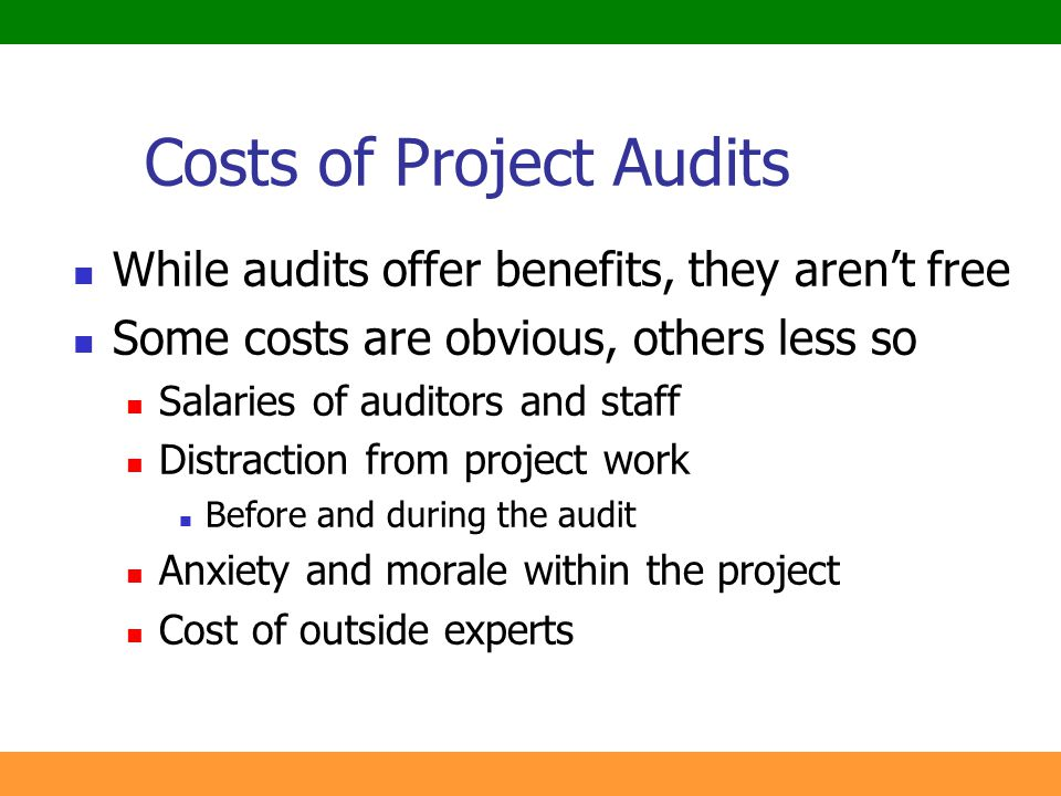 Costs of Project Audits
