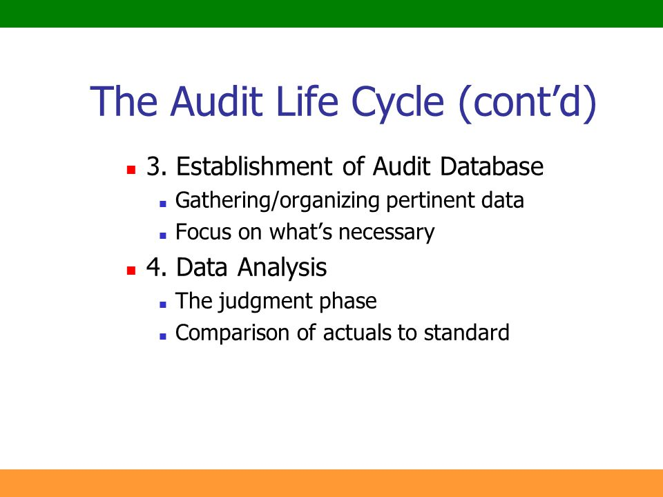 The Audit Life Cycle (cont'd)