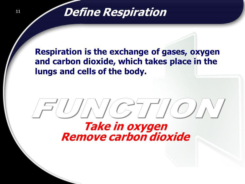 Take in oxygen Remove carbon dioxide