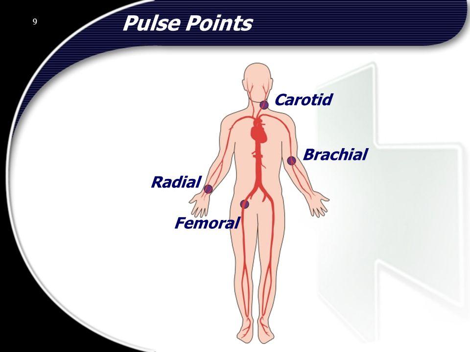 Pulse Points Carotid Brachial Radial Femoral 9