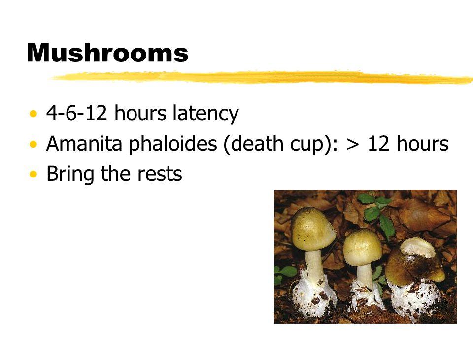 Mushrooms 4-6-12 hours latency