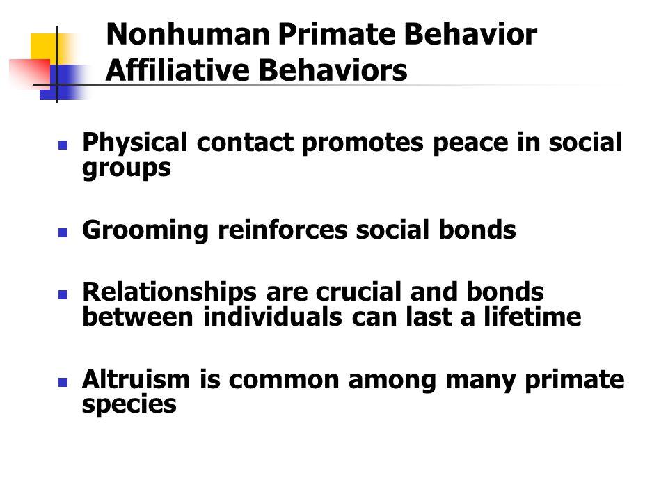 Nonhuman Primate Behavior Affiliative Behaviors