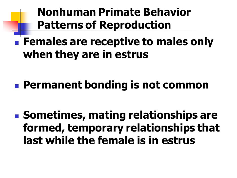 Nonhuman Primate Behavior Patterns of Reproduction