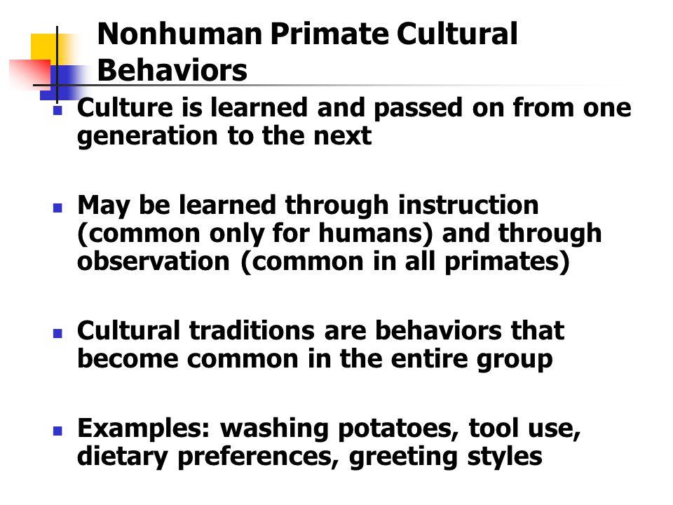 Nonhuman Primate Cultural Behaviors