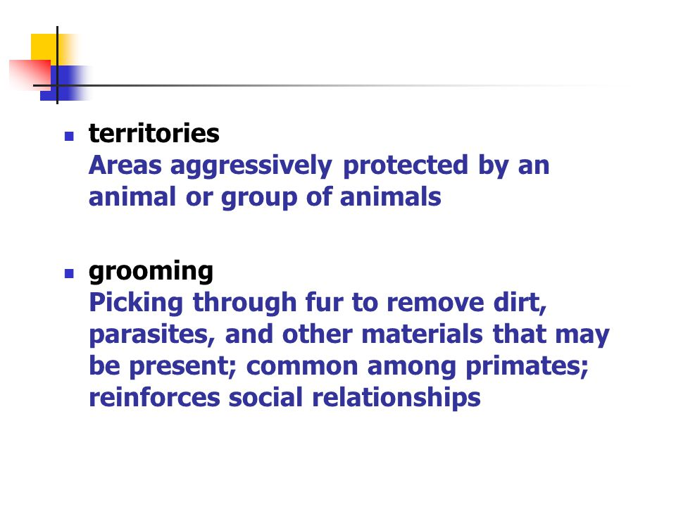territories Areas aggressively protected by an animal or group of animals