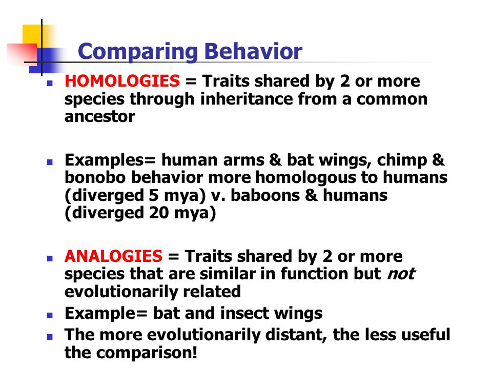 Comparing Behavior HOMOLOGIES = Traits shared by 2 or more species through inheritance from a common ancestor.