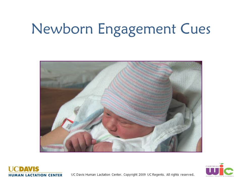 Newborn Engagement Cues