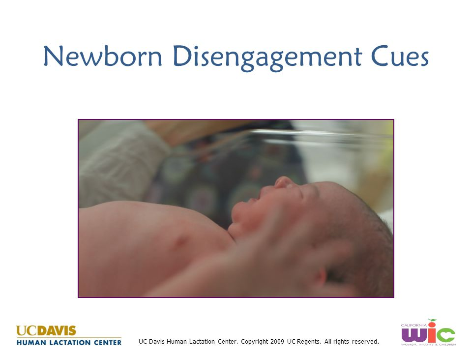Newborn Disengagement Cues