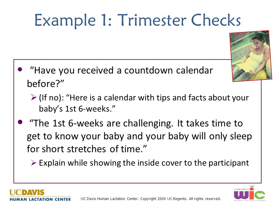 Example 1: Trimester Checks