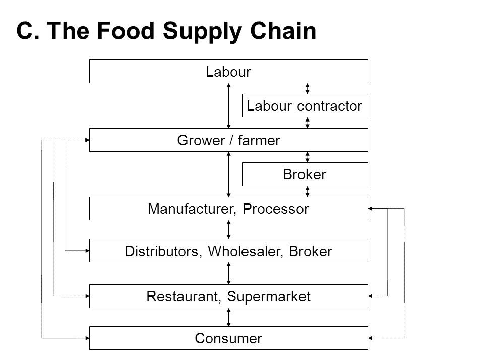C. The Food Supply Chain Labour Labour contractor Grower / farmer