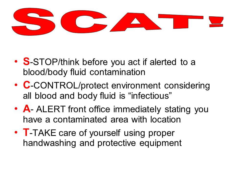 SCAT! S-STOP/think before you act if alerted to a blood/body fluid contamination.