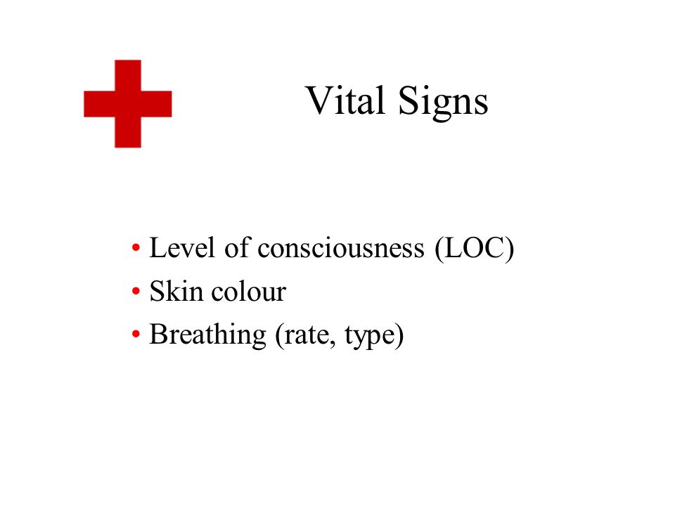 Level of consciousness (LOC) Skin colour Breathing (rate, type)