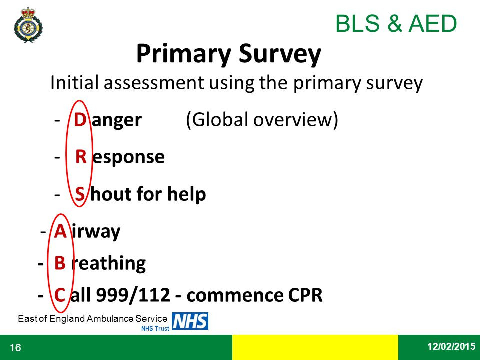 Initial assessment using the primary survey