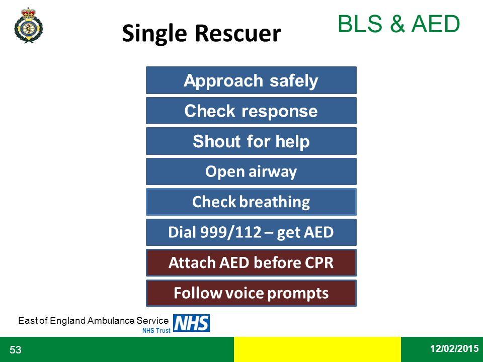 Single Rescuer Approach safely Check response Shout for help