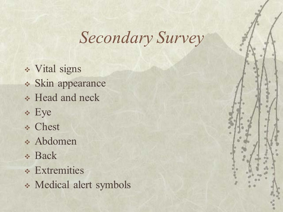 Secondary Survey Vital signs Skin appearance Head and neck Eye Chest