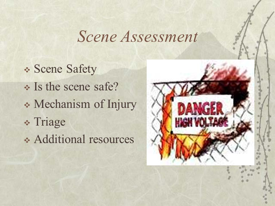 Scene Assessment Scene Safety Is the scene safe Mechanism of Injury