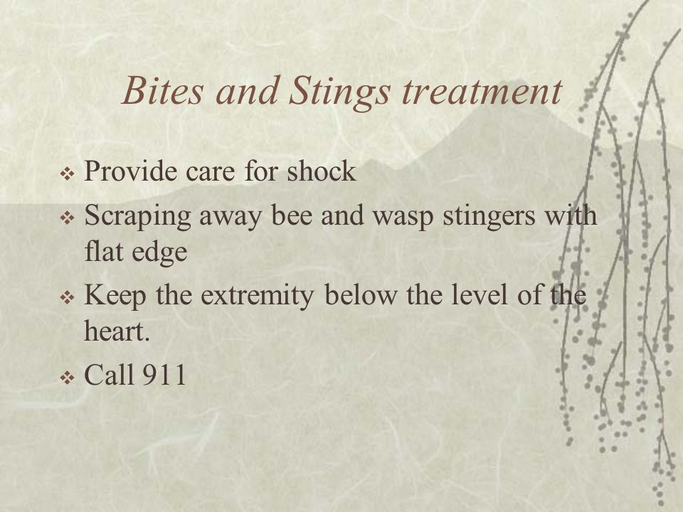 Bites and Stings treatment