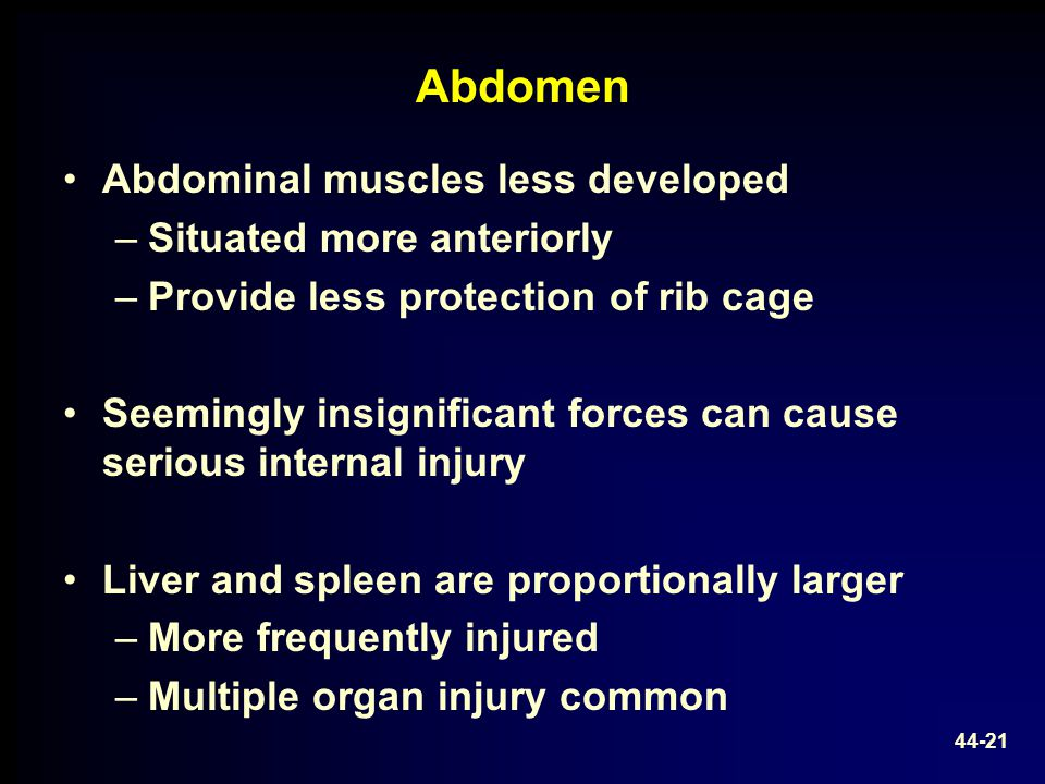 Abdomen Abdominal muscles less developed Situated more anteriorly