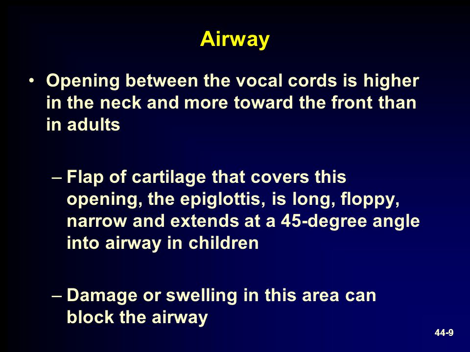 Airway Opening between the vocal cords is higher in the neck and more toward the front than in adults.