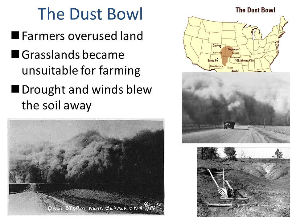 The Dust Bowl Farmers overused land