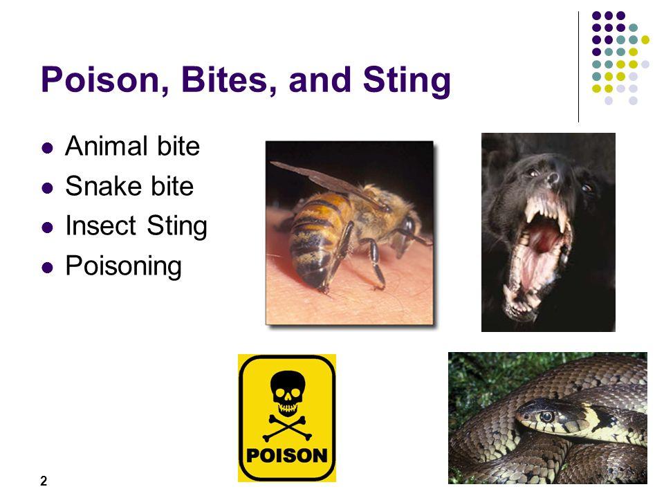Poison, Bites, and Sting Animal bite Snake bite Insect Sting Poisoning