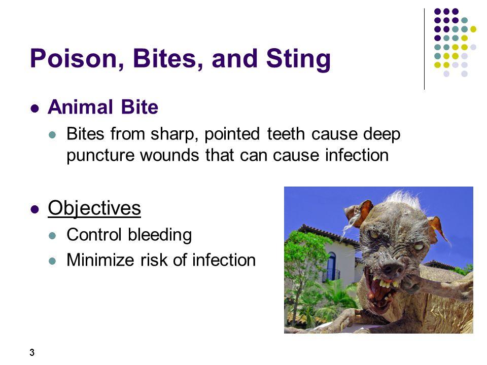 Poison, Bites, and Sting Animal Bite Objectives