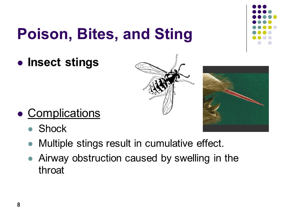 Poison, Bites, and Sting Insect stings Complications Shock
