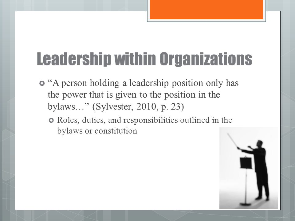 Leadership within Organizations