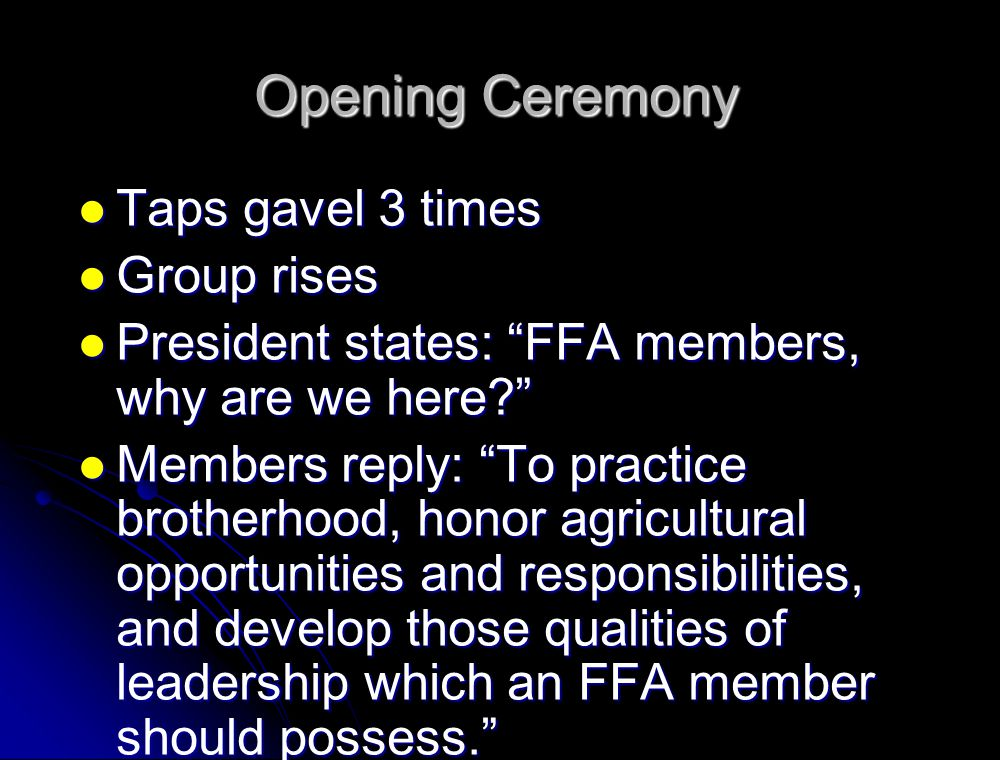 Opening Ceremony Taps gavel 3 times Group rises