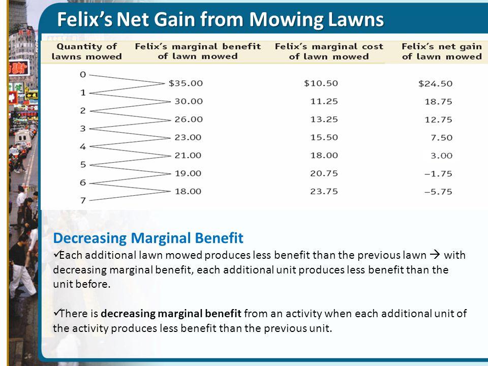 Felix's Net Gain from Mowing Lawns