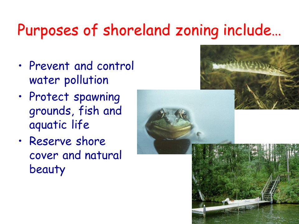 Purposes of shoreland zoning include…