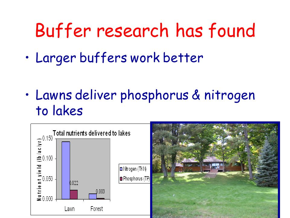 Buffer research has found