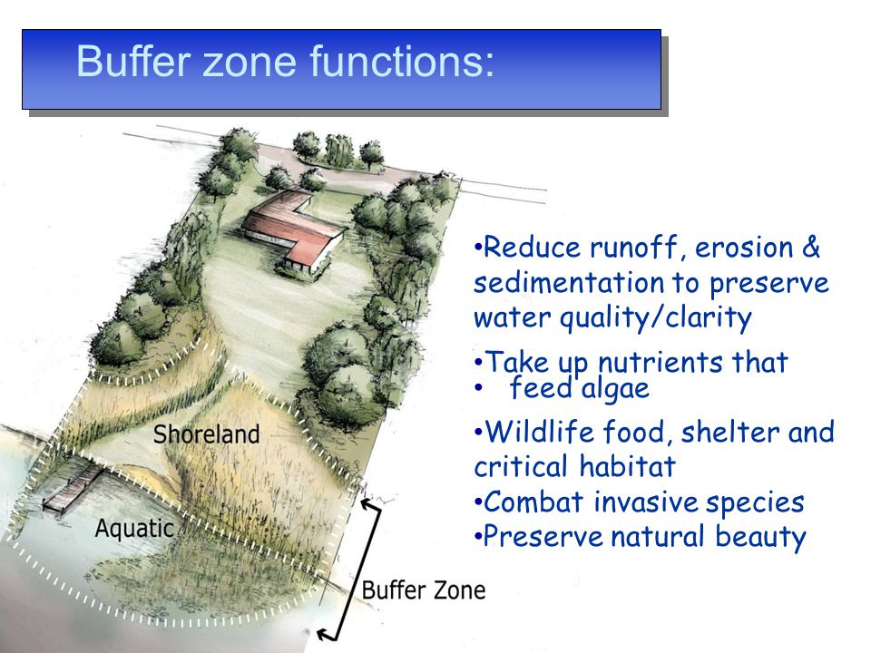 Buffer zone functions: