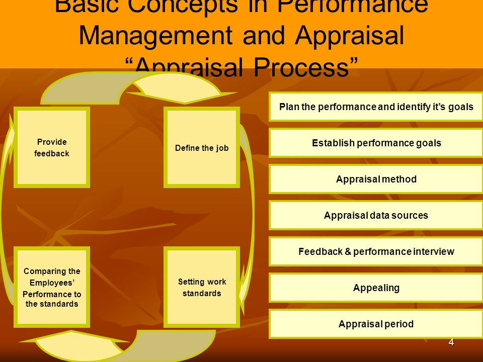 Basic Concepts in Performance Management and Appraisal Appraisal Process