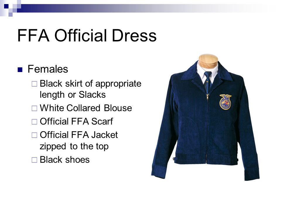 FFA Official Dress Females Black skirt of appropriate length or Slacks