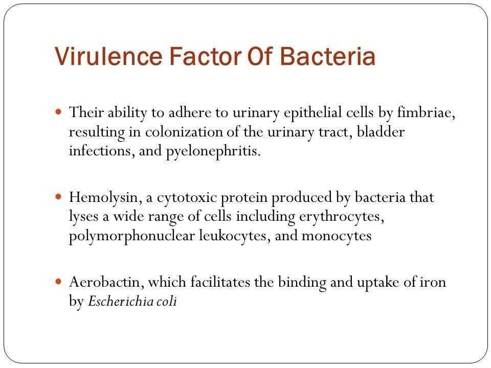Virulence Factor Of Bacteria