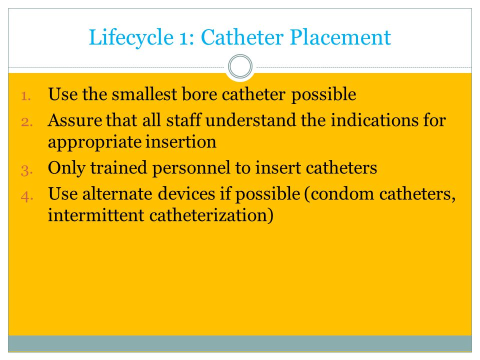 Lifecycle 1: Catheter Placement