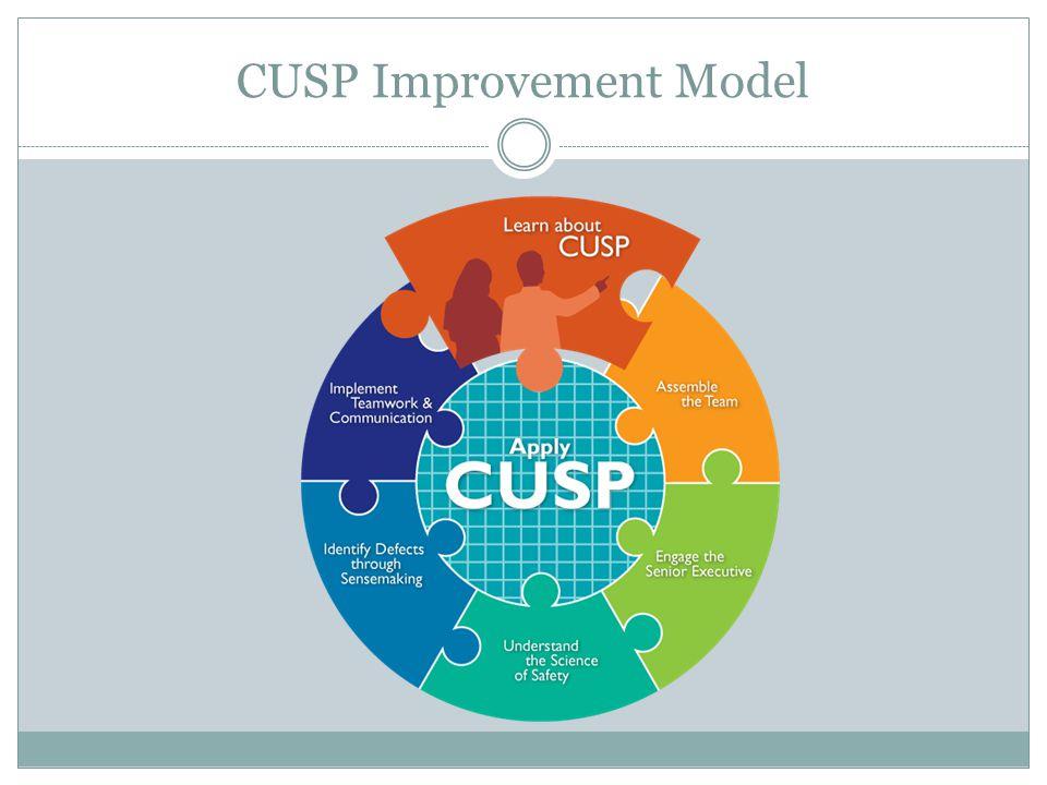 CUSP Improvement Model