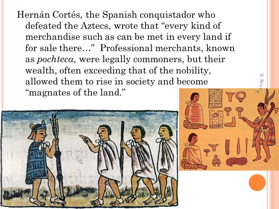 Hernán Cortés, the Spanish conquistador who defeated the Aztecs, wrote that every kind of merchandise such as can be met in every land if for sale there… Professional merchants, known as pochteca, were legally commoners, but their wealth, often exceeding that of the nobility, allowed them to rise in society and become magnates of the land.