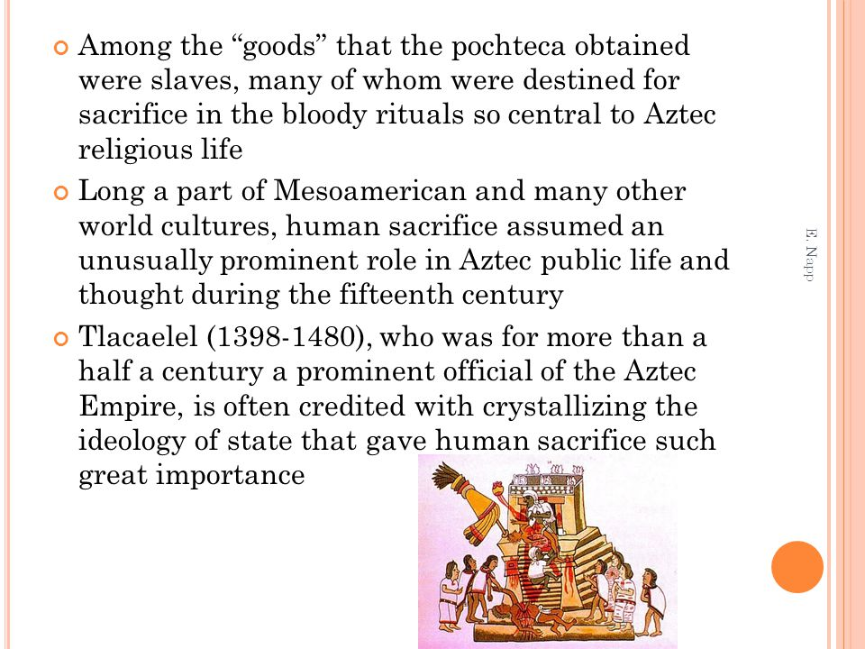 Among the goods that the pochteca obtained were slaves, many of whom were destined for sacrifice in the bloody rituals so central to Aztec religious life