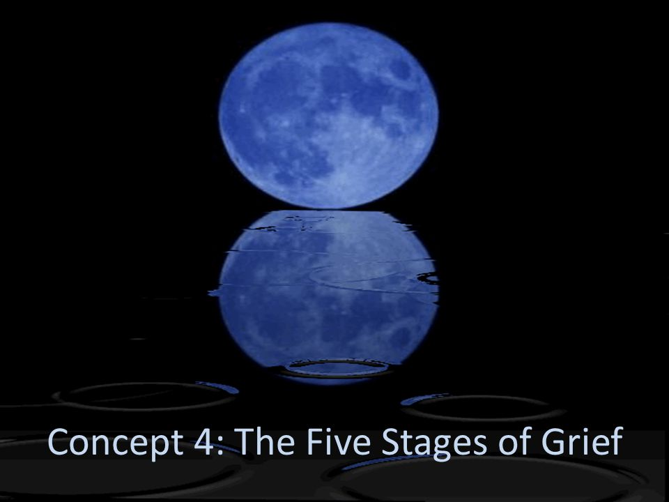 Concept 4: The Five Stages of Grief