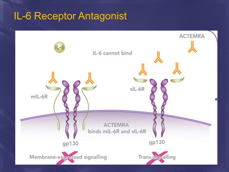 IL-6 Receptor Antagonist