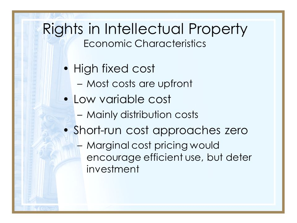 Rights in Intellectual Property Economic Characteristics