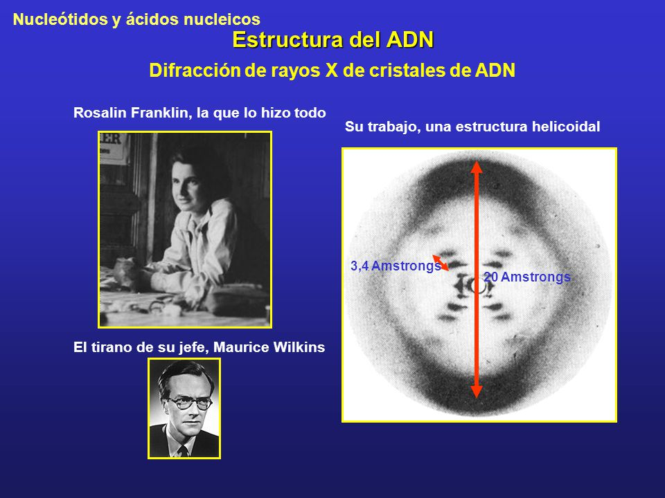 Difracción de rayos X de cristales de ADN