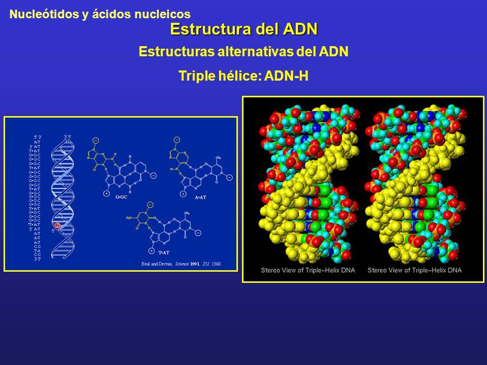 Estructuras alternativas del ADN