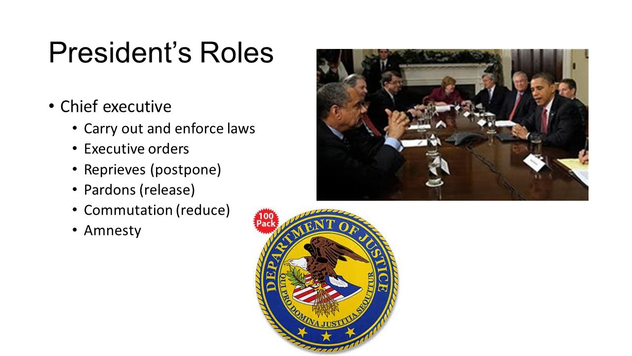 President's Roles Chief executive Carry out and enforce laws