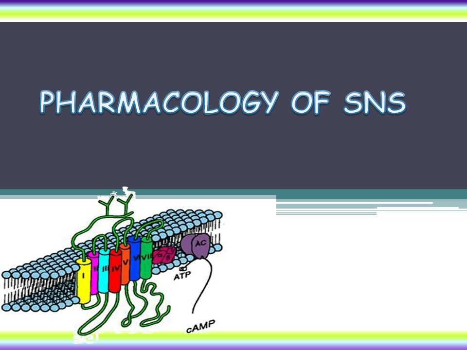 PHARMACOLOGY OF SNS