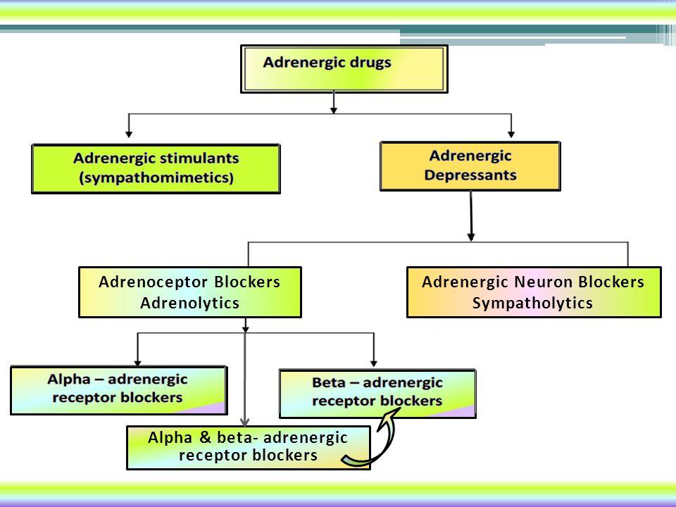 Adrenoceptor Blockers Adrenolytics
